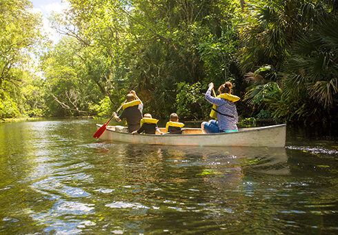 Rear view of a family canoe ride down a beautiful tropical river.